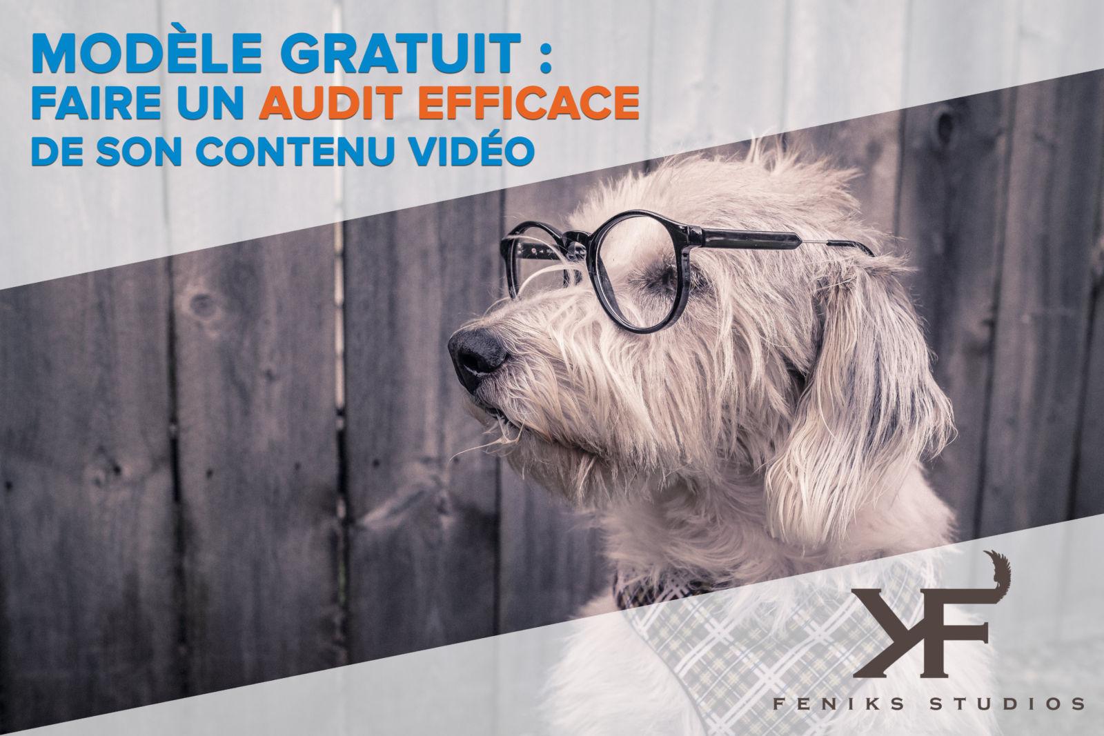 Modèle gratuit : Faire un Audit Efficace de son Contenu Vidéo